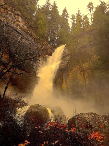 Golden Falls 1